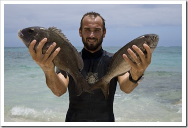 Spangled Emperor and a bream for dinner from Five Finger Reef