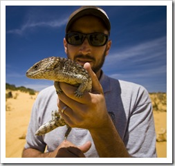 Sam and a lucky Shingleback Lizard in The Pinnacles Desert in Nambung National Park
