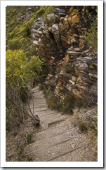 The trail to Bluff Knoll