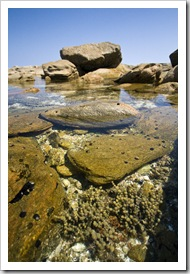 Tide pools at Munglinup Reef