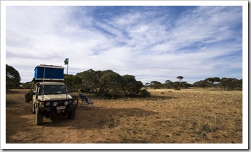 Camping amongst the Mallee scrub on the Nullarbor Plain