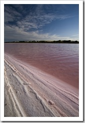 A pink salt lake on the track to Cactus Beach