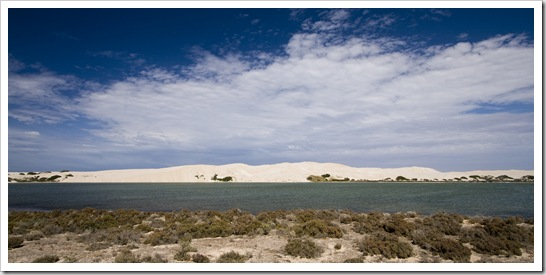 The striking white sand dunes near Cactus Beach