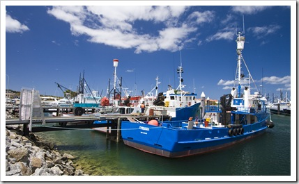 Fishing boats in Port Lincoln
