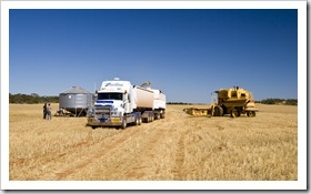 Finishing the harvest on the east coast of the Eyre Peninsula