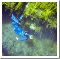 Sam diving in Piccaninnie Ponds