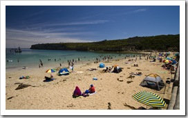 The busy beach at Port Campbell