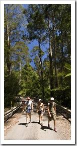 Chris, Gina and Lisa hiking to Phantom Falls