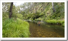 Chris cooling off in the Howqua River at Noonans Flat