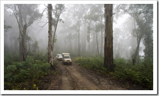 The Tank and Bessie in the fog along the Wombat Spur Track
