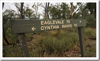 The beginning of the Cynthia Range Track