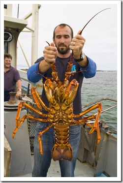 Sam holding a four kilogram crayfish