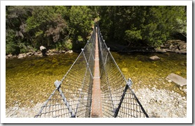 The swinging bridge over the Franklin River