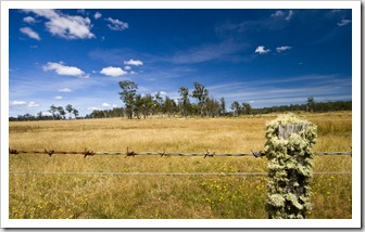 Countryside on the drive to Freycinet Peninsula