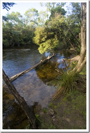 The South Esk River alongside Griffin Park camping area
