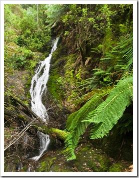 Evercreech Falls