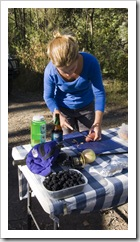 Lisa taking care of dinner next to a container of fresh blackberries