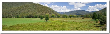 High country pastures near Harrietville