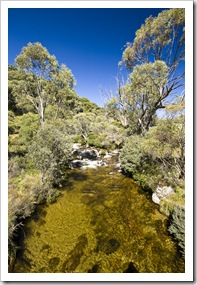 The Thredbo River