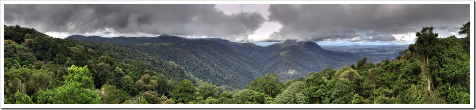 Looking across Dorrigo National Park toward Coffs Harbour in the distance