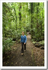 Lisa hiking through the rainforest in Dorrigo National Park