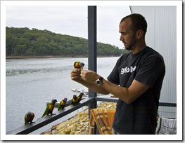 Sam with some friendly Rainbow Lorikeets at Lake Conjola