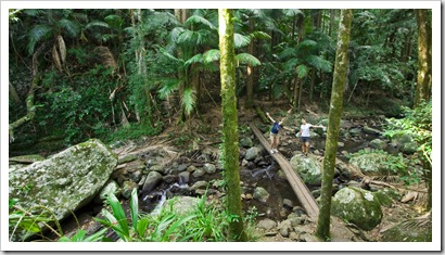 Gina and Lisa near Brushbox Falls in Border Ranges National Park