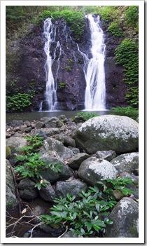 Brushbox Falls in Border Ranges National Park
