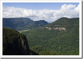 Lamington National Park: looking south into New South Wales