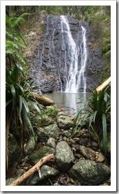 Lamington National Park: cascades along the track to Ballanjui Falls