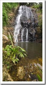 Lamington National Park: Ballanjui Falls