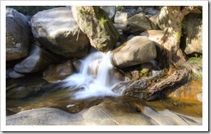 The creek below Jourama Falls