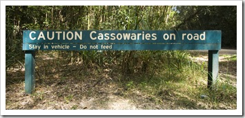 Our first sign of Cassowaries in Girringun National Park