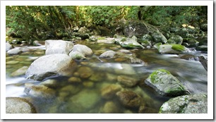 Rex Creek in Mossman Gorge