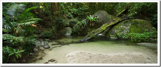 Wurrmbu Creek in Mossman Gorge